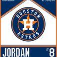 Astros Orange